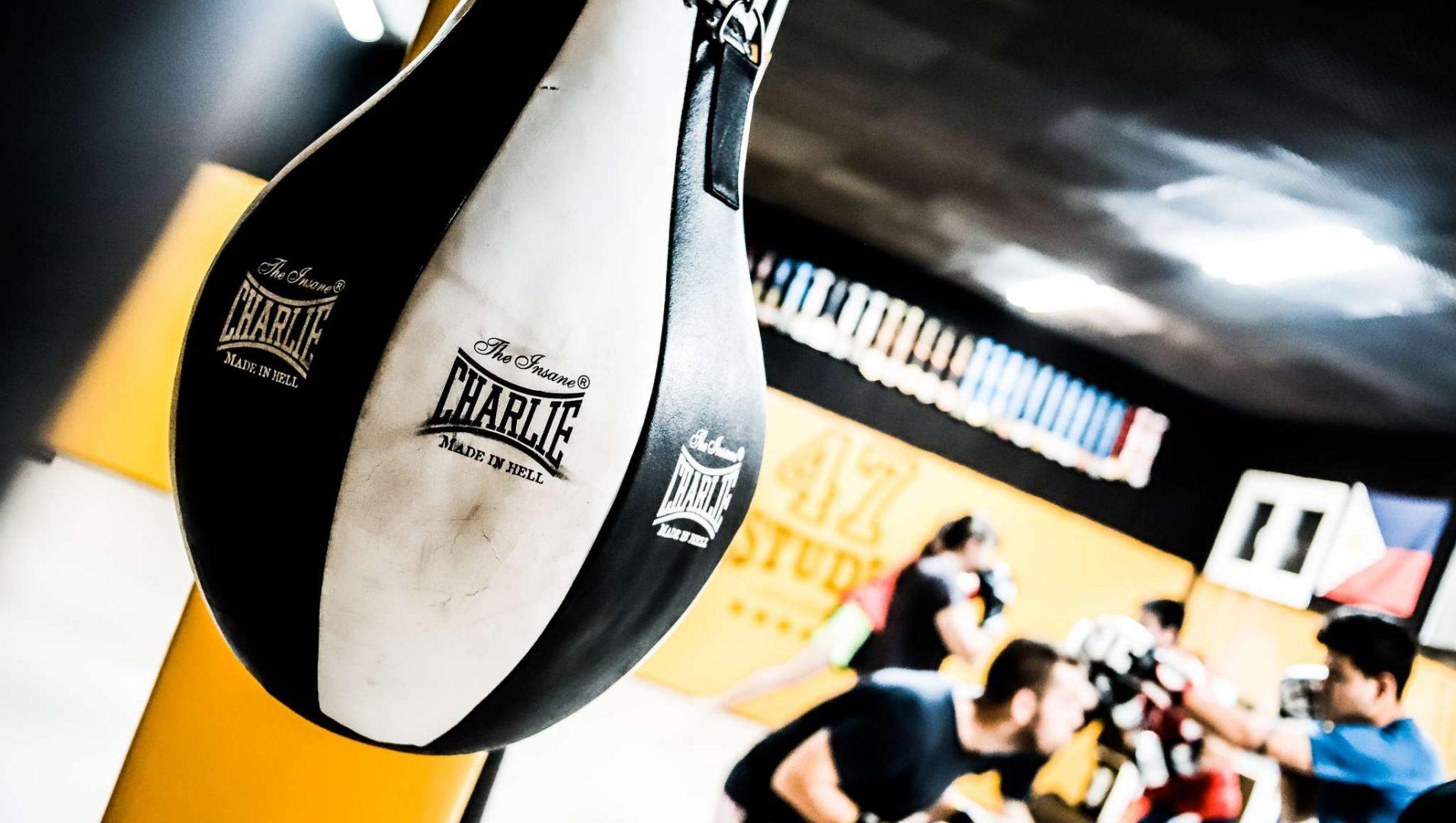 Escuela MMA Madrid